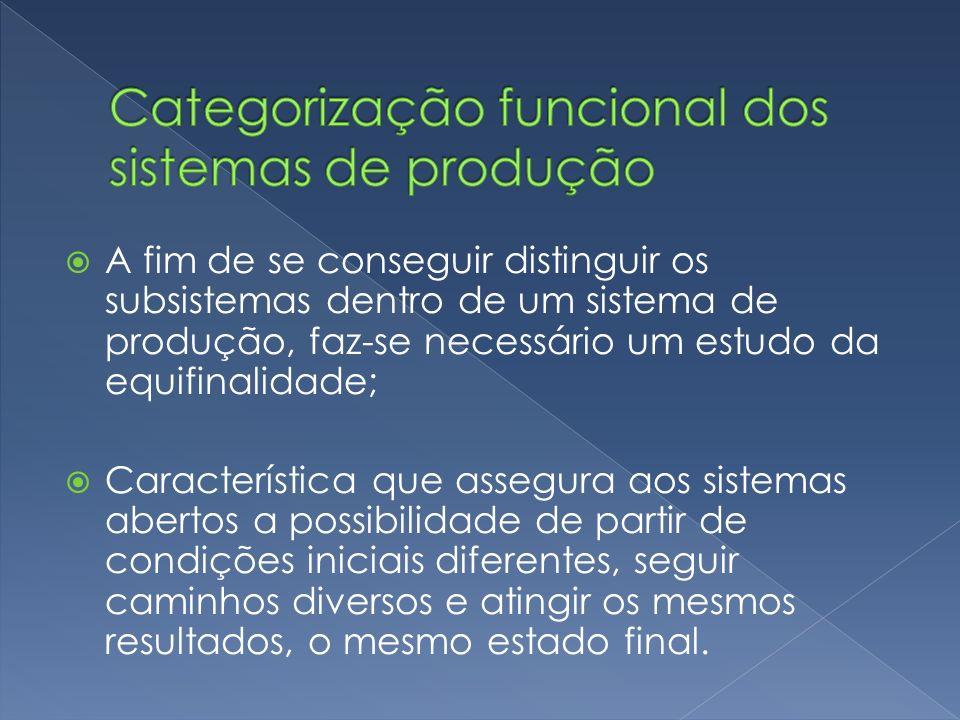 A fim de se conseguir distinguir os subsistemas dentro de um sistema de produção, faz-se necessário um estudo da equifinalidade; Característica que as
