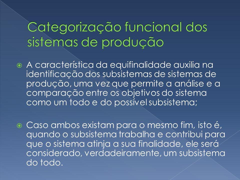 A característica da equifinalidade auxilia na identificação dos subsistemas de sistemas de produção, uma vez que permite a análise e a comparação entr
