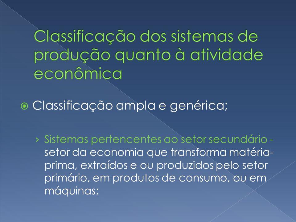 Classificação ampla e genérica; Sistemas pertencentes ao setor secundário - setor da economia que transforma matéria- prima, extraídos e ou produzidos