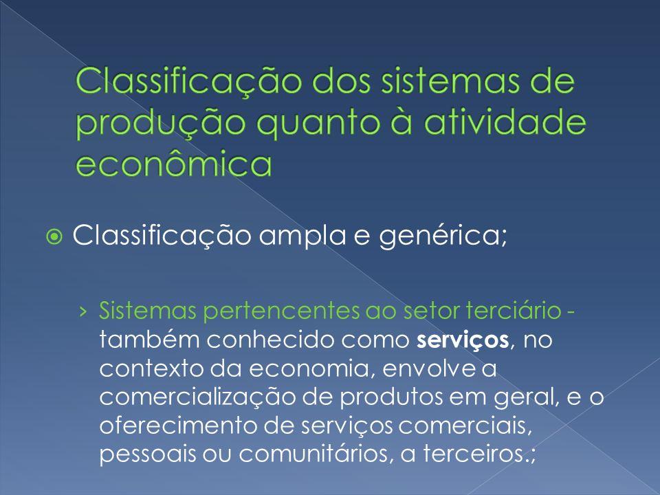 Classificação ampla e genérica; Sistemas pertencentes ao setor terciário - também conhecido como serviços, no contexto da economia, envolve a comercia