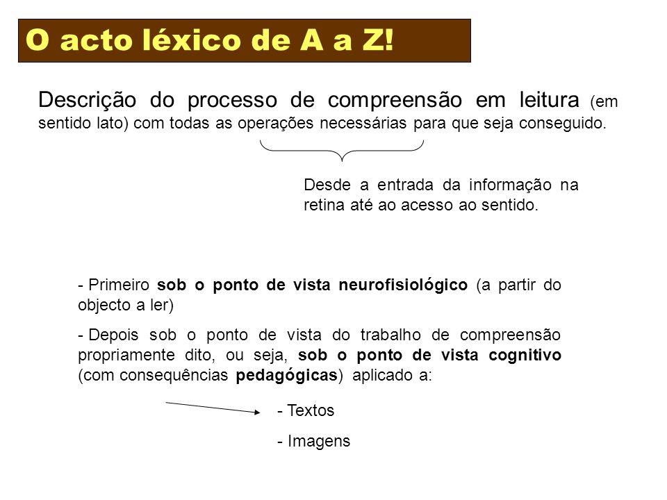 Descrição do processo de compreensão em leitura (em sentido lato) com todas as operações necessárias para que seja conseguido.