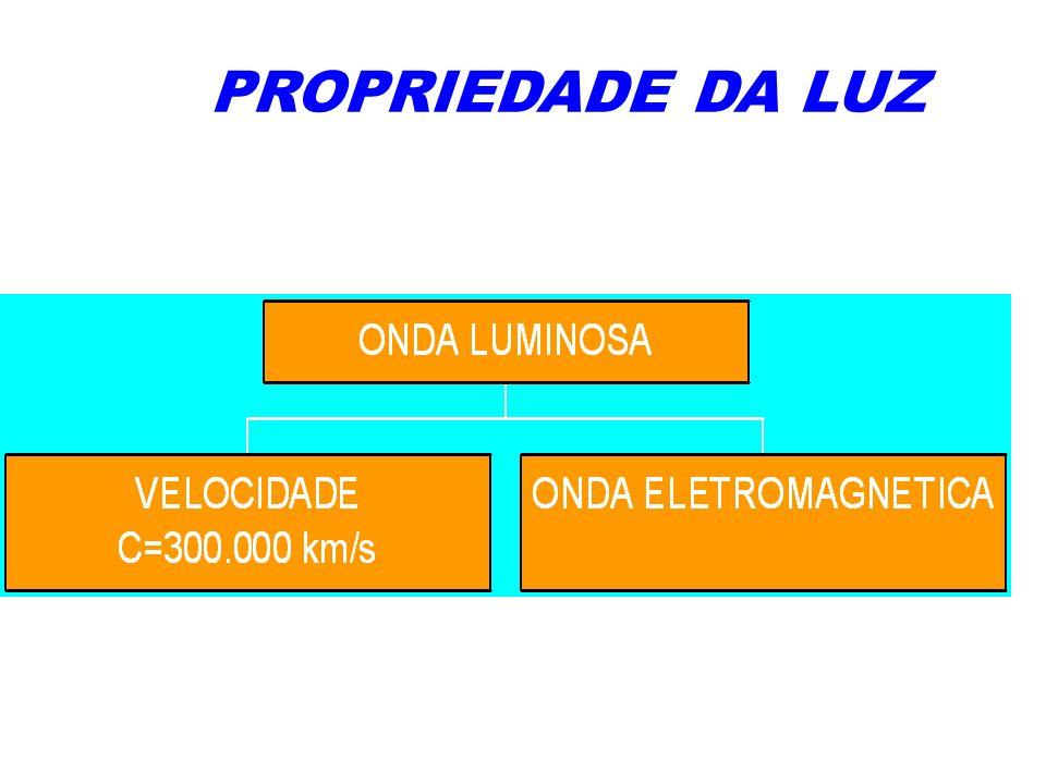 Prof. Rodrigo Lins Odair Mateus