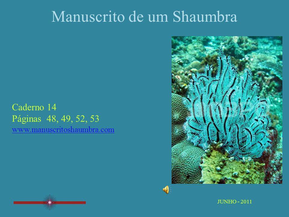 Manuscrito de um Shaumbra Caderno 14 Páginas 48, 49, 52, 53 www.manuscritoshaumbra.com JUNHO - 2011