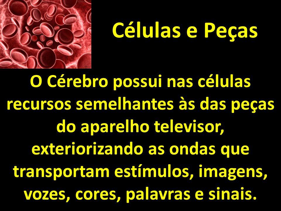 Células e Peças O Cérebro possui nas células recursos semelhantes às das peças do aparelho televisor, exteriorizando as ondas que transportam estímulo