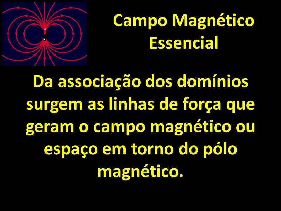 Campo Magnético Essencial Da associação dos domínios surgem as linhas de força que geram o campo magnético ou espaço em torno do pólo magnético.