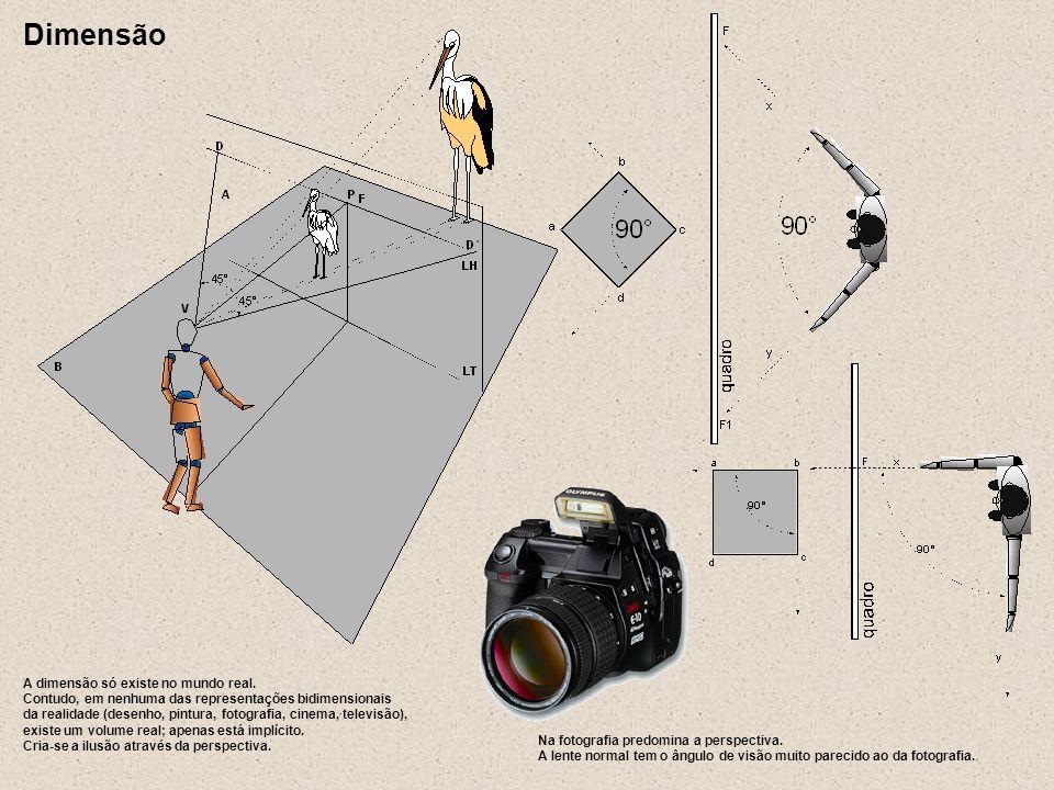 A dimensão só existe no mundo real. Contudo, em nenhuma das representações bidimensionais da realidade (desenho, pintura, fotografia, cinema, televisã
