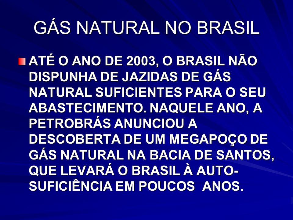 GÁS NATURAL NO BRASIL ATÉ O ANO DE 2003, O BRASIL NÃO DISPUNHA DE JAZIDAS DE GÁS NATURAL SUFICIENTES PARA O SEU ABASTECIMENTO.