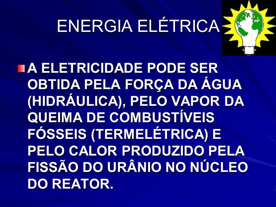 ENERGIA ELÉTRICA A ELETRICIDADE PODE SER OBTIDA PELA FORÇA DA ÁGUA (HIDRÁULICA), PELO VAPOR DA QUEIMA DE COMBUSTÍVEIS FÓSSEIS (TERMELÉTRICA) E PELO CALOR PRODUZIDO PELA FISSÃO DO URÂNIO NO NÚCLEO DO REATOR.