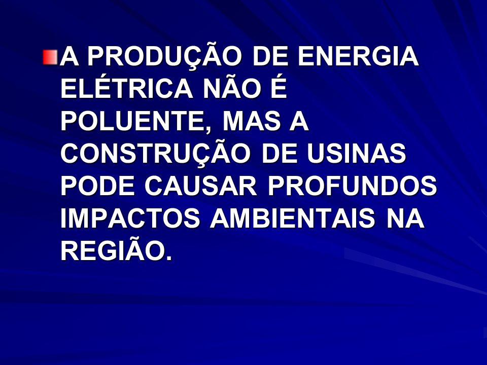 A PRODUÇÃO DE ENERGIA ELÉTRICA NÃO É POLUENTE, MAS A CONSTRUÇÃO DE USINAS PODE CAUSAR PROFUNDOS IMPACTOS AMBIENTAIS NA REGIÃO.