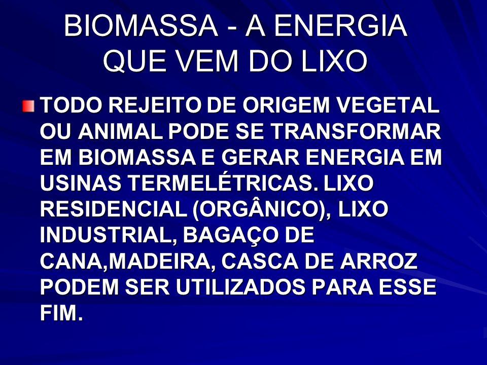 BIOMASSA - A ENERGIA QUE VEM DO LIXO TODO REJEITO DE ORIGEM VEGETAL OU ANIMAL PODE SE TRANSFORMAR EM BIOMASSA E GERAR ENERGIA EM USINAS TERMELÉTRICAS.