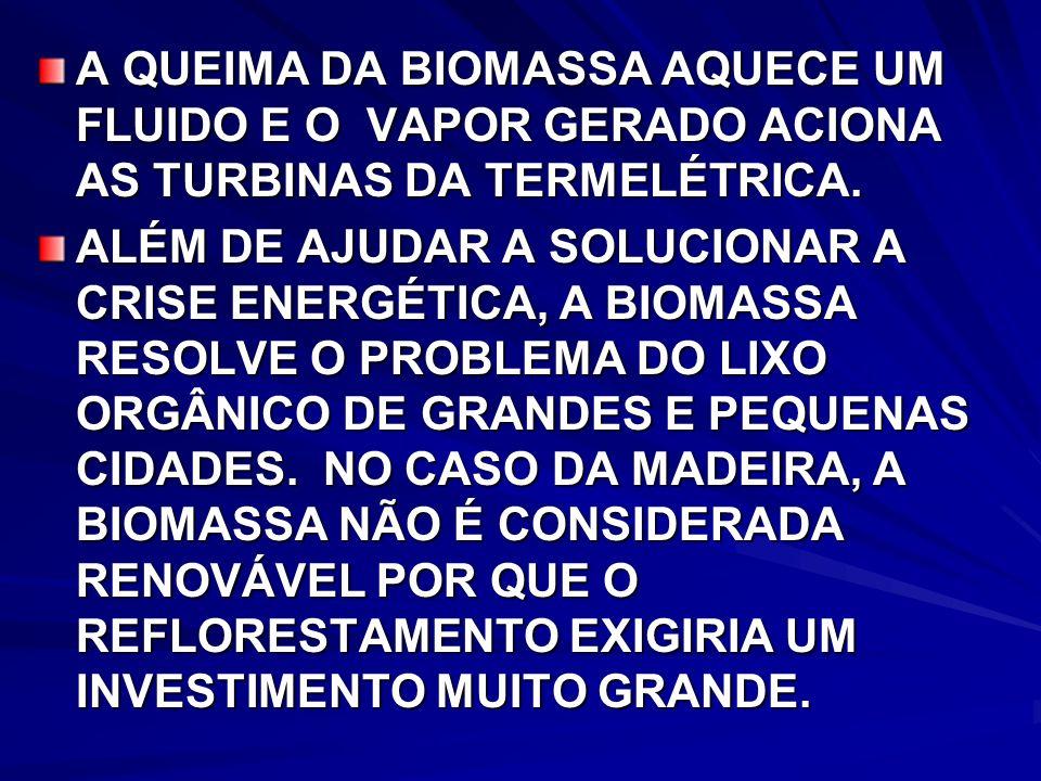 A QUEIMA DA BIOMASSA AQUECE UM FLUIDO E O VAPOR GERADO ACIONA AS TURBINAS DA TERMELÉTRICA.