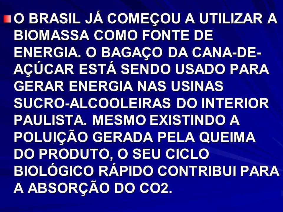 O BRASIL JÁ COMEÇOU A UTILIZAR A BIOMASSA COMO FONTE DE ENERGIA.
