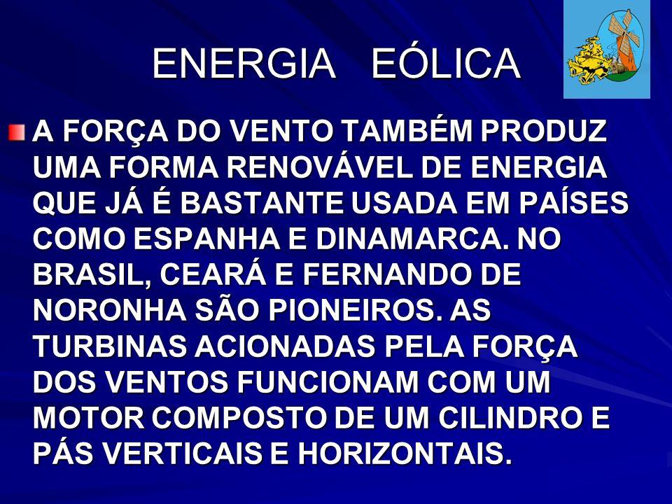 ENERGIA EÓLICA A FORÇA DO VENTO TAMBÉM PRODUZ UMA FORMA RENOVÁVEL DE ENERGIA QUE JÁ É BASTANTE USADA EM PAÍSES COMO ESPANHA E DINAMARCA.