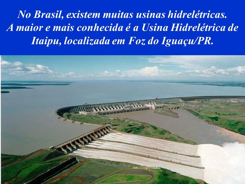 Por isso, as novas hidrelétricas têm sido construídas com o acompanhamento de ecologistas e cientistas do meio ambiente, para que se altere o mínimo p