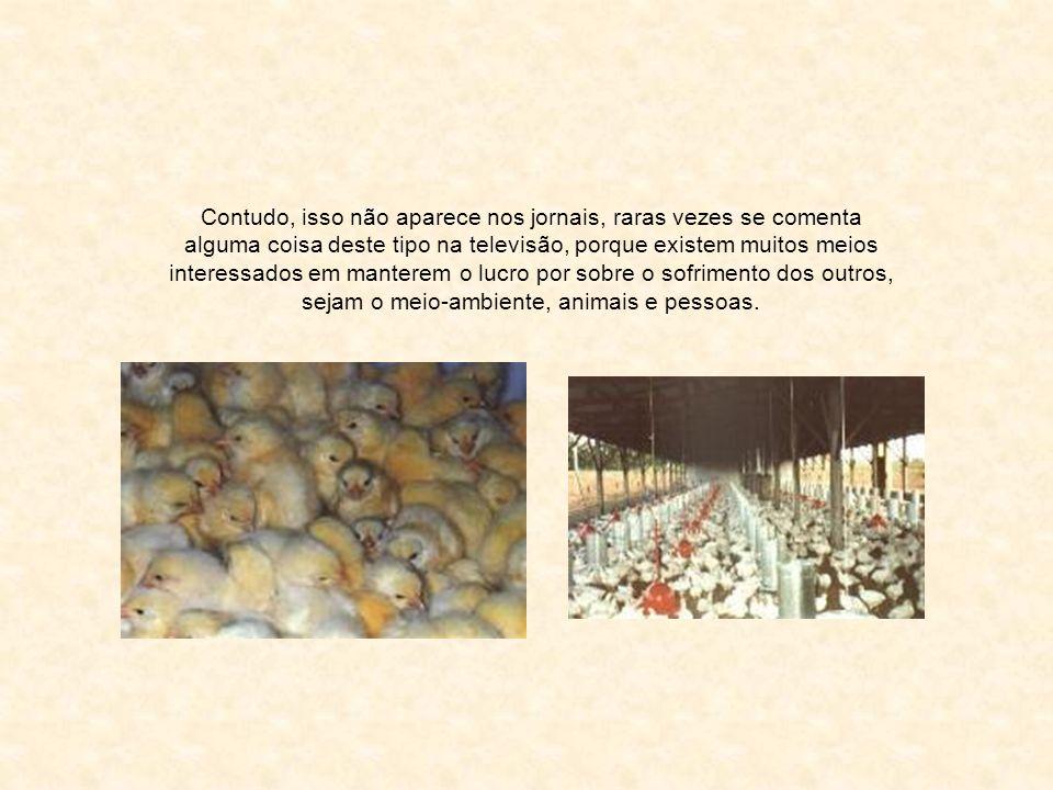 Outras contaminações provêm da carne vermelha, de gado, porco e carneiro, e seus subprodutos.