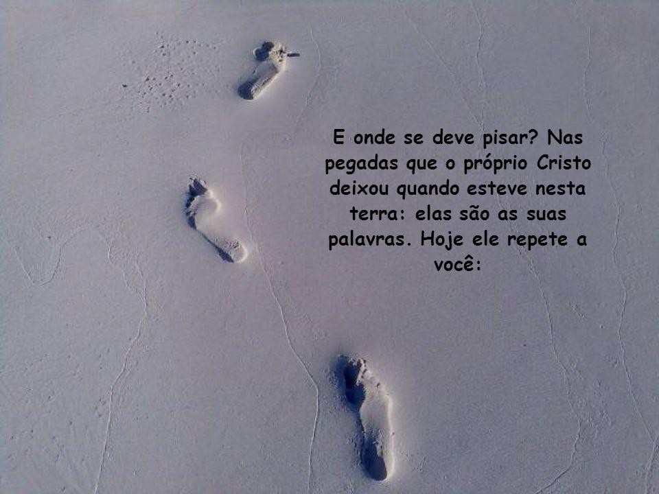 Para o cristão, o mundo é como uma floresta cerrada, na qual é preciso ver bem onde se pisa.