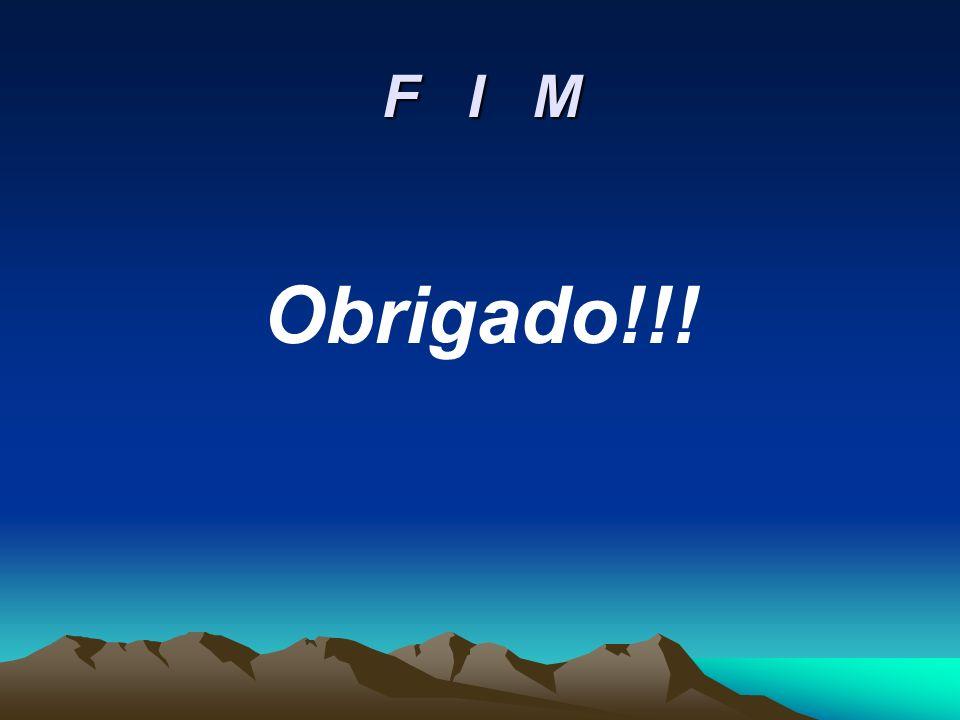 F I M Obrigado!!!