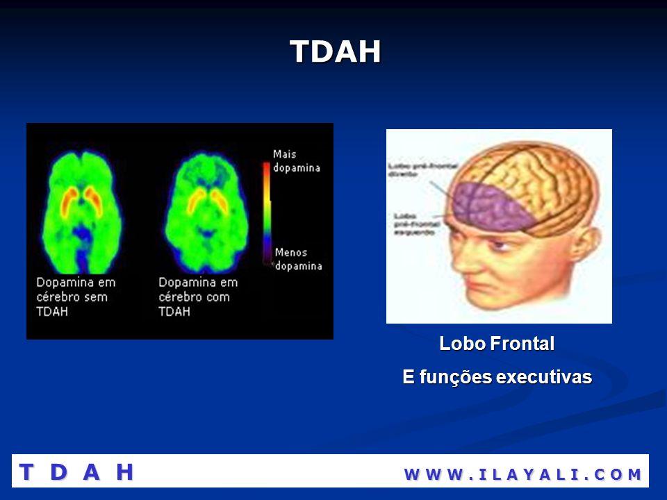 TDAH Lobo Frontal E funções executivas T D A H W W W. I L A Y A L I. C O M