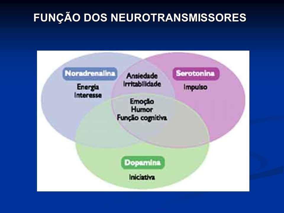 FUNÇÃO DOS NEUROTRANSMISSORES