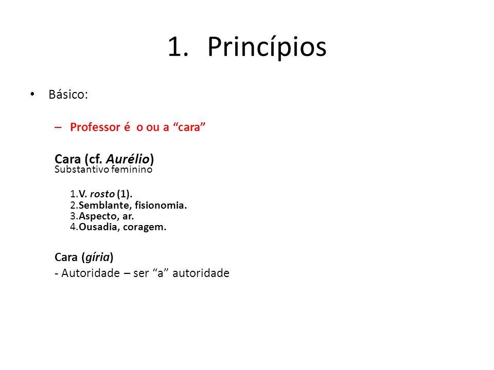 1.Princípios Básico: – Professor é o ou a cara Cara (cf. Aurélio) Substantivo feminino 1.V. rosto (1). 2.Semblante, fisionomia. 3.Aspecto, ar. 4.Ousad