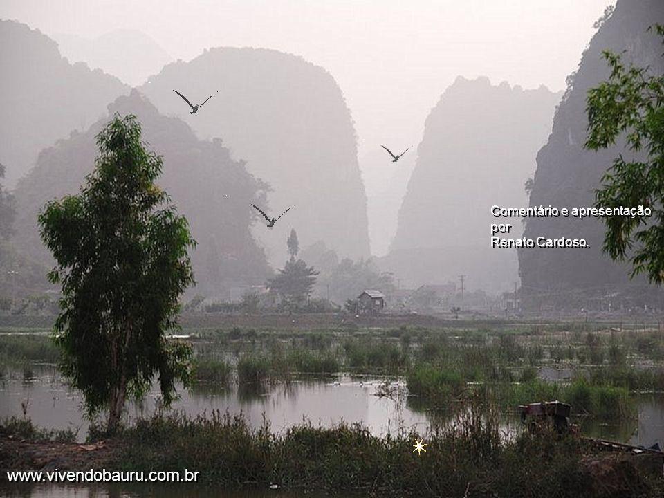 ´Mas o que também é muito importante no momento, é tomar conhecimento e até mesmo se sensibilizar com a volta por cima do povo do Vietnam. Pelas linda