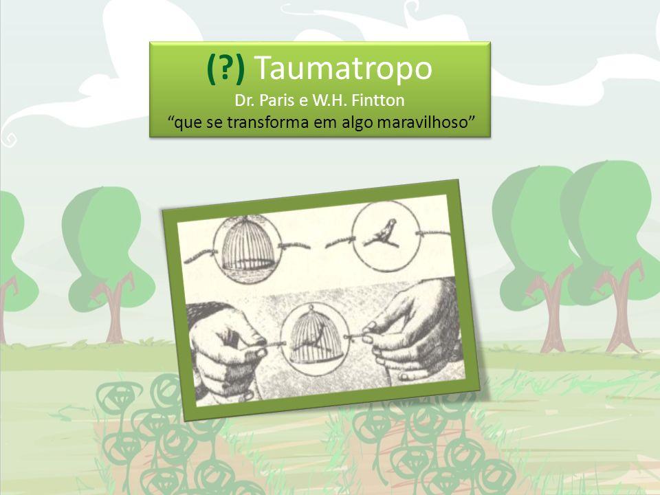 (?) Taumatropo Dr. Paris e W.H. Fintton que se transforma em algo maravilhoso (?) Taumatropo Dr. Paris e W.H. Fintton que se transforma em algo maravi