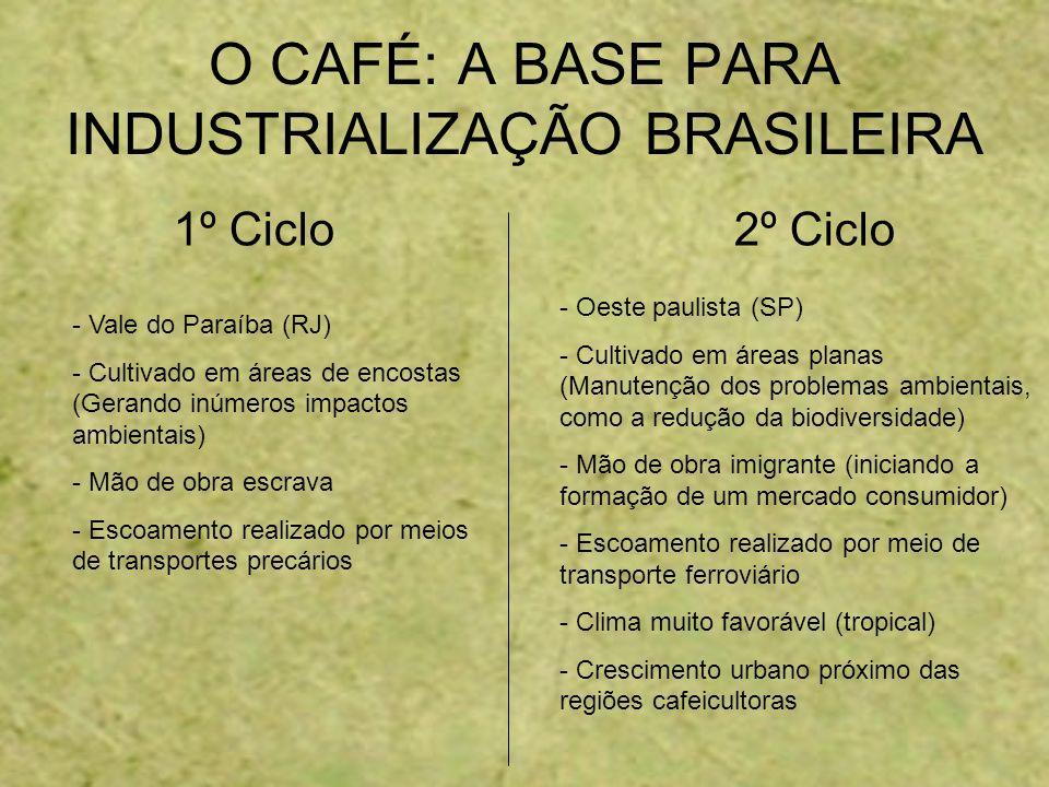 1º Ciclo 2º Ciclo O CAFÉ: A BASE PARA INDUSTRIALIZAÇÃO BRASILEIRA - Vale do Paraíba (RJ) - Cultivado em áreas de encostas (Gerando inúmeros impactos a
