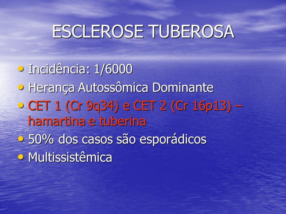 ESCLEROSE TUBEROSA Incidência: 1/6000 Incidência: 1/6000 Herança Autossômica Dominante Herança Autossômica Dominante CET 1 (Cr 9q34) e CET 2 (Cr 16p13) – hamartina e tuberina CET 1 (Cr 9q34) e CET 2 (Cr 16p13) – hamartina e tuberina 50% dos casos são esporádicos 50% dos casos são esporádicos Multissistêmica Multissistêmica