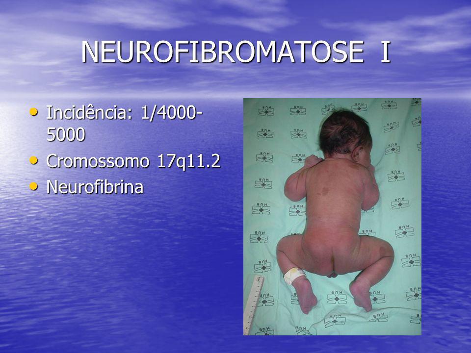 NEUROFIBROMATOSE I Incidência: 1/4000- 5000 Incidência: 1/4000- 5000 Cromossomo 17q11.2 Cromossomo 17q11.2 Neurofibrina Neurofibrina