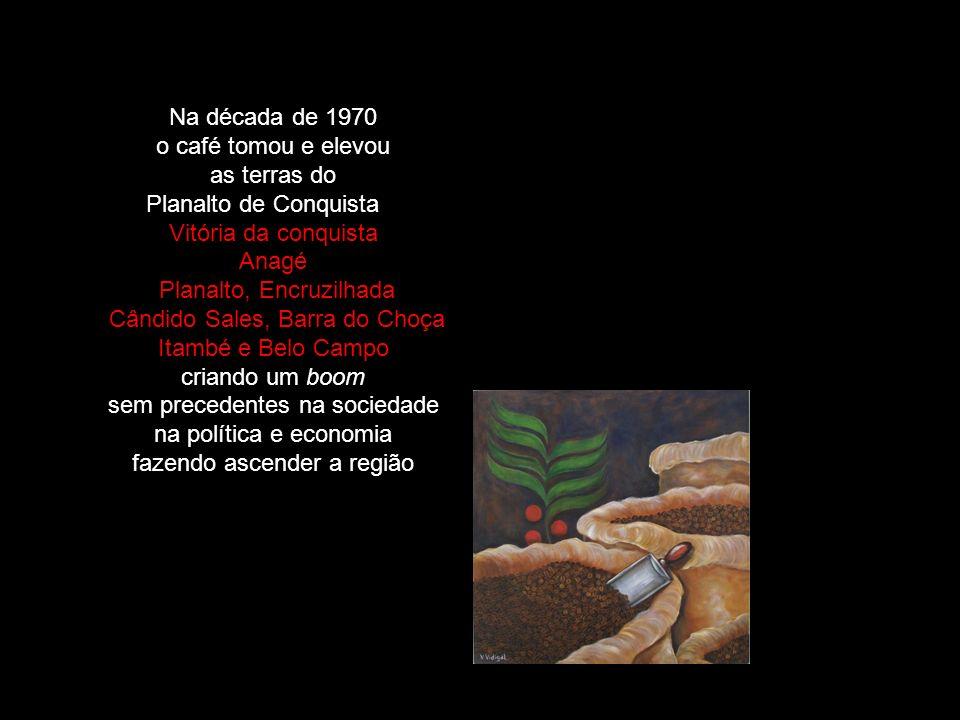 Na década de 1970 o café tomou e elevou as terras do Planalto de Conquista Vitória da conquista Anagé Planalto, Encruzilhada Cândido Sales, Barra do C