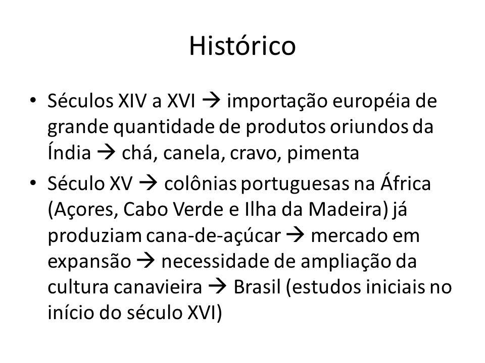 Histórico Séculos XIV a XVI importação européia de grande quantidade de produtos oriundos da Índia chá, canela, cravo, pimenta Século XV colônias port