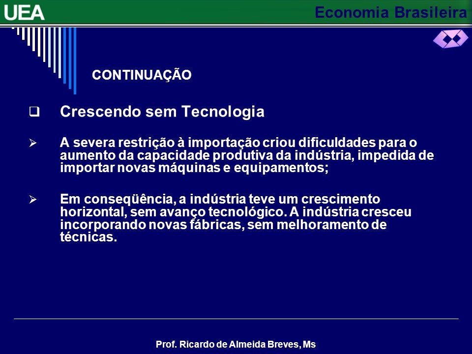 Economia Brasileira Prof. Ricardo de Almeida Breves, Ms CONTINUAÇÃO INDÚSTRIA DE BENS DE CONSUMO Nos anos trinta, desenvolveram-se principalmente as i