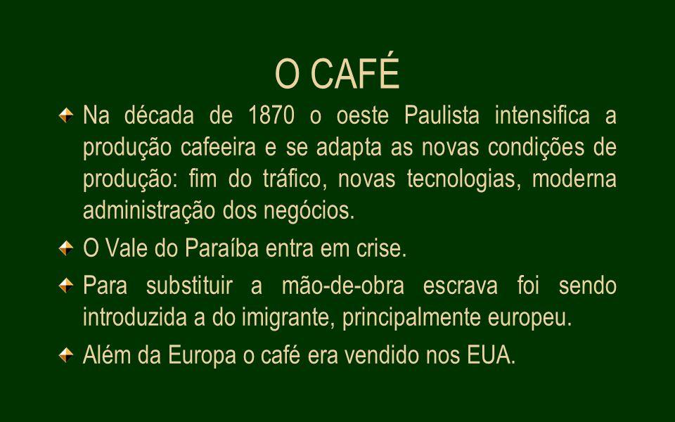 O CAFÉ Na década de 1870 o oeste Paulista intensifica a produção cafeeira e se adapta as novas condições de produção: fim do tráfico, novas tecnologias, moderna administração dos negócios.