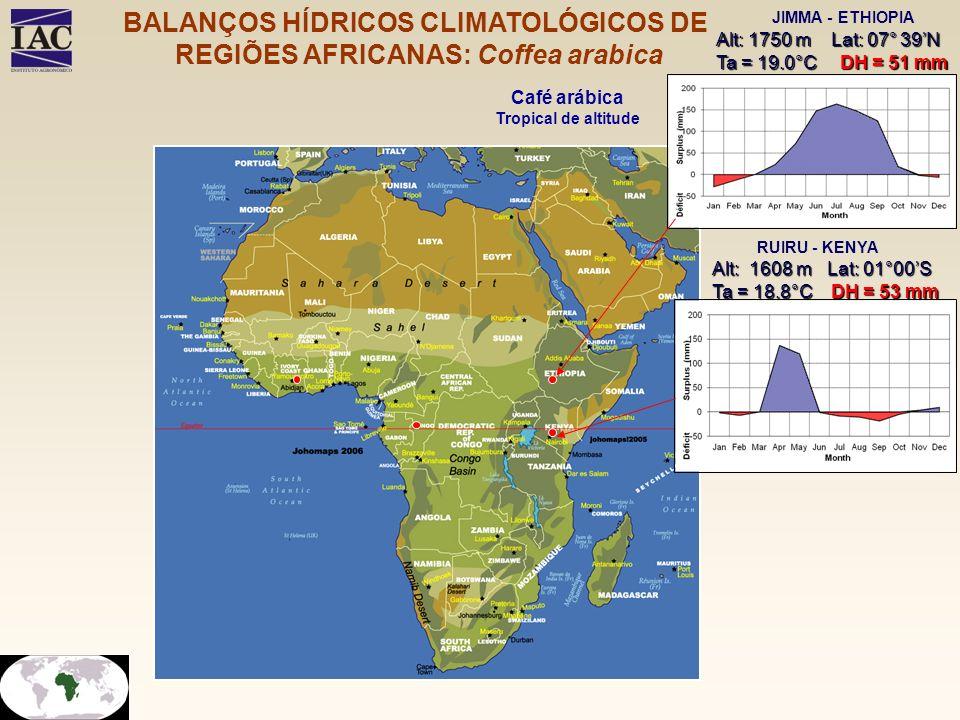 Alt: 1750 m Lat: 07° 39N Ta = 19.0°C DH = 51 mm JIMMA - ETHIOPIA RUIRU - KENYA Alt: 1608 m Lat: 01°00S Ta = 18.8°C DH = 53 mm Café arábica Tropical de