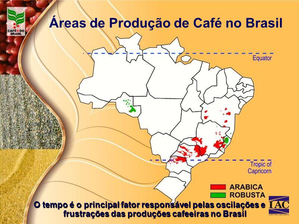 Áreas de Produção de Café no Brasil O tempo é o principal fator responsável pelas oscilações e frustrações das produções cafeeiras no Brasil
