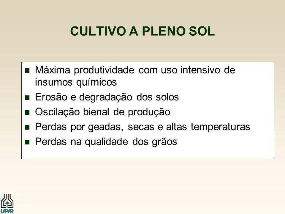 CULTIVO A PLENO SOL n Máxima produtividade com uso intensivo de insumos químicos n Erosão e degradação dos solos n Oscilação bienal de produção n Perd