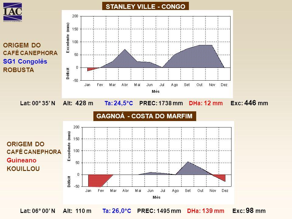 STANLEY VILLE - CONGO GAGNOÁ - COSTA DO MARFIM ORIGEM DO CAFÉ CANEPHORA Guineano KOUILLOU Lat: 06° 00 N Alt: 110 m Ta: 26,0 °C PREC: 1495 mm DHa: 139