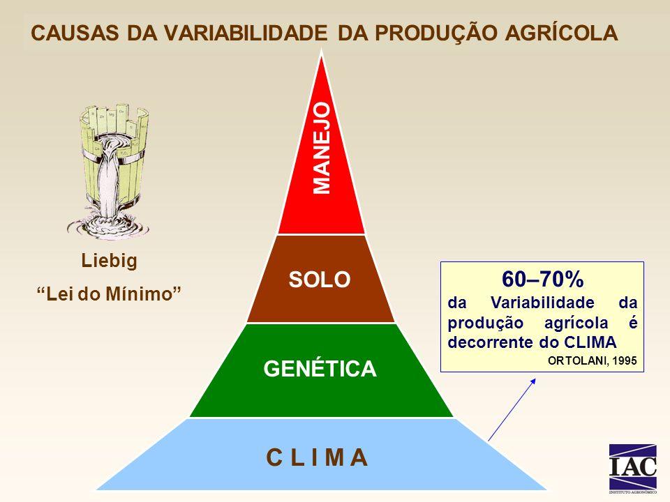 CAUSAS DA VARIABILIDADE DA PRODUÇÃO AGRÍCOLA 60–70% da Variabilidade da produção agrícola é decorrente do CLIMA ORTOLANI, 1995 C L I M A GENÉTICA SOLO