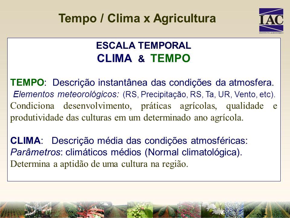 ESCALA TEMPORAL CLIMA & TEMPO TEMPO: Descrição instantânea das condições da atmosfera. Elementos meteorológicos: (RS, Precipitação, RS, Ta, UR, Vento,