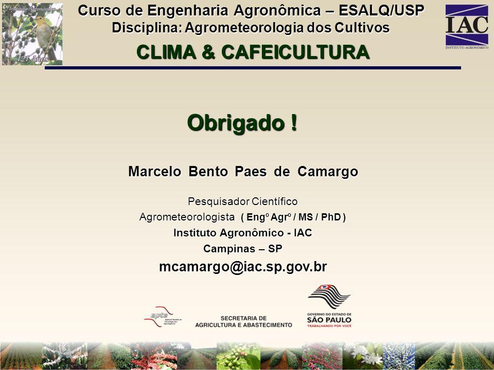 Obrigado ! Marcelo Bento Paes de Camargo Pesquisador Científico Agrometeorologista ( Engº Agrº / MS / PhD ) Instituto Agronômico - IAC Campinas – SP m