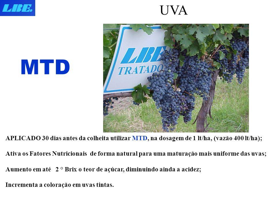 UVA APLICADO 30 dias antes da colheita utilizar MTD, na dosagem de 1 lt/ha, (vazão 400 lt/ha); Ativa os Fatores Nutricionais de forma natural para uma