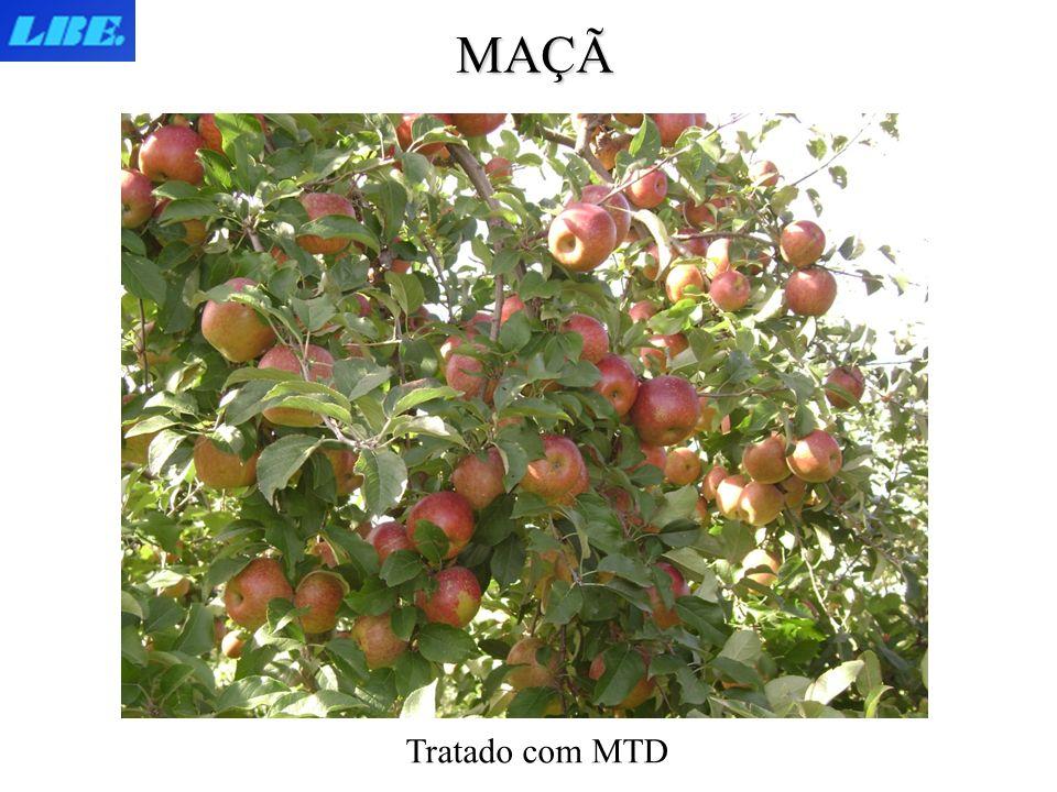 Tratado com MTD MAÇÃ