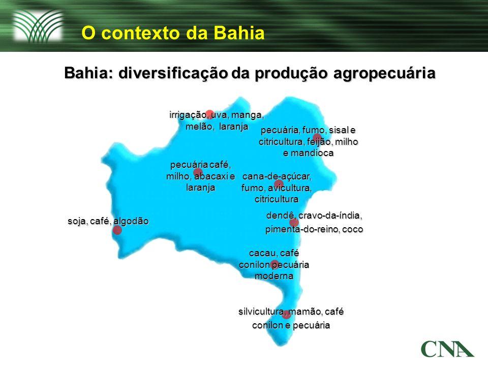 O contexto da Bahia Bahia: diversificação da produção agropecuária soja, café, algodão irrigação, uva, manga, melão, laranja pecuária café, milho, aba