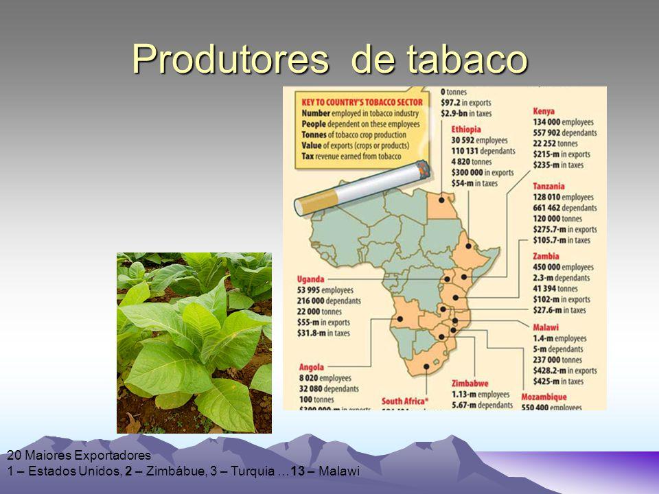 Produtores de tabaco 20 Maiores Exportadores 1 – Estados Unidos, 2 – Zimbábue, 3 – Turquia …13 – Malawi