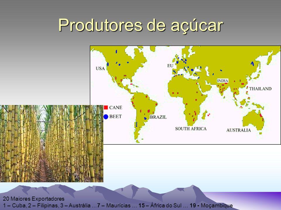 Produtores de açúcar 20 Maiores Exportadores 1 – Cuba, 2 – Filipinas, 3 – Austrália …7 – Maurícias … 15 – África do Sul … 19 - Moçambique