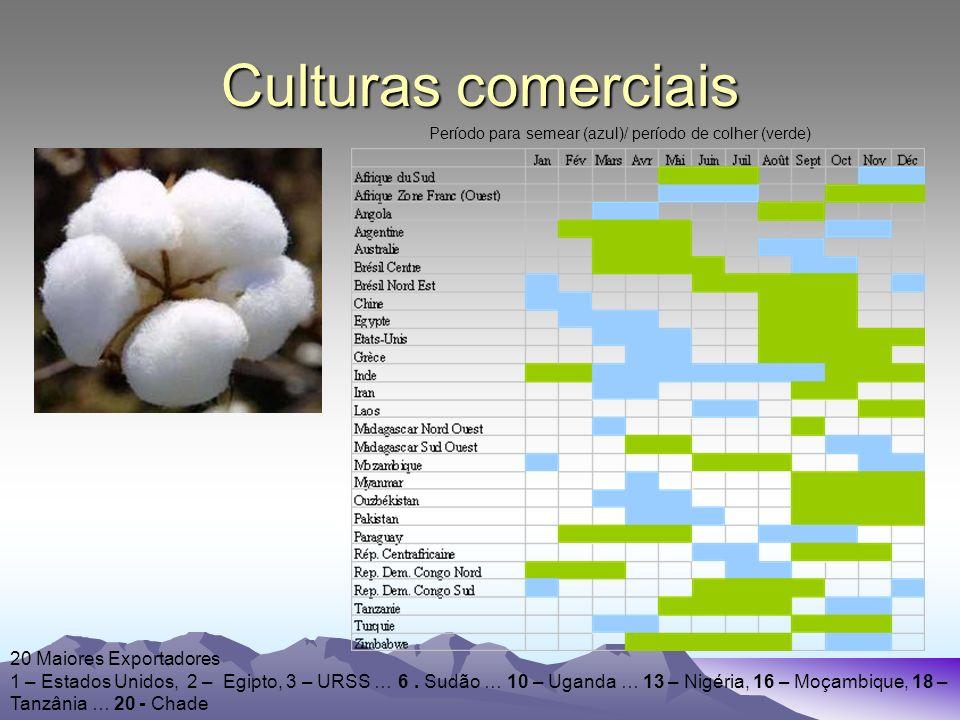 Culturas comerciais Período para semear (azul)/ período de colher (verde) 20 Maiores Exportadores 1 – Estados Unidos, 2 – Egipto, 3 – URSS … 6.