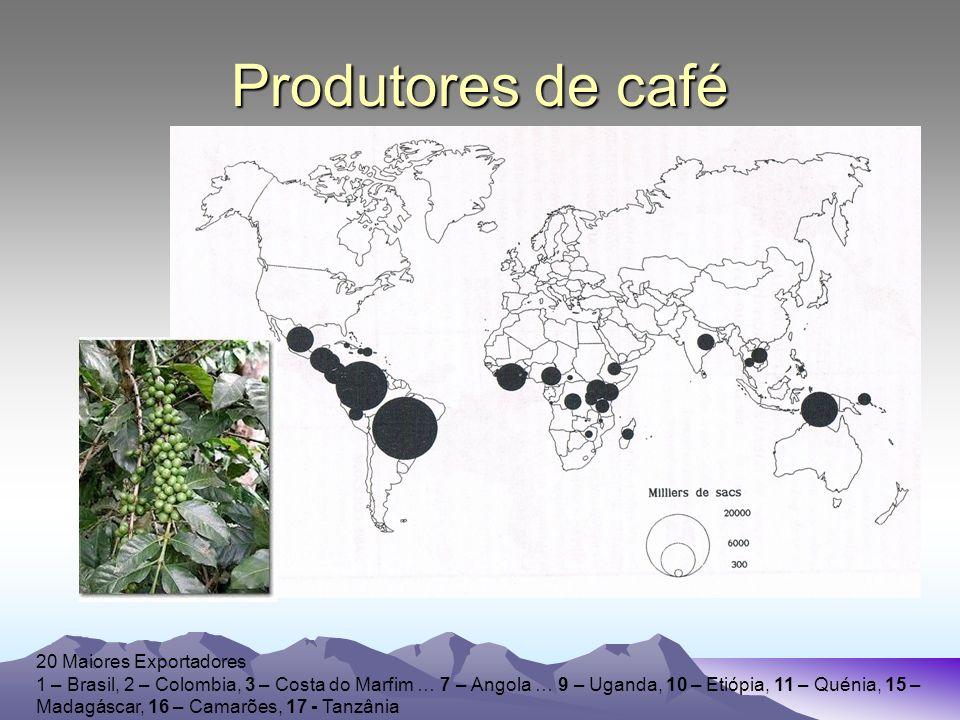 Produtores de café 20 Maiores Exportadores 1 – Brasil, 2 – Colombia, 3 – Costa do Marfim … 7 – Angola … 9 – Uganda, 10 – Etiópia, 11 – Quénia, 15 – Madagáscar, 16 – Camarões, 17 - Tanzânia