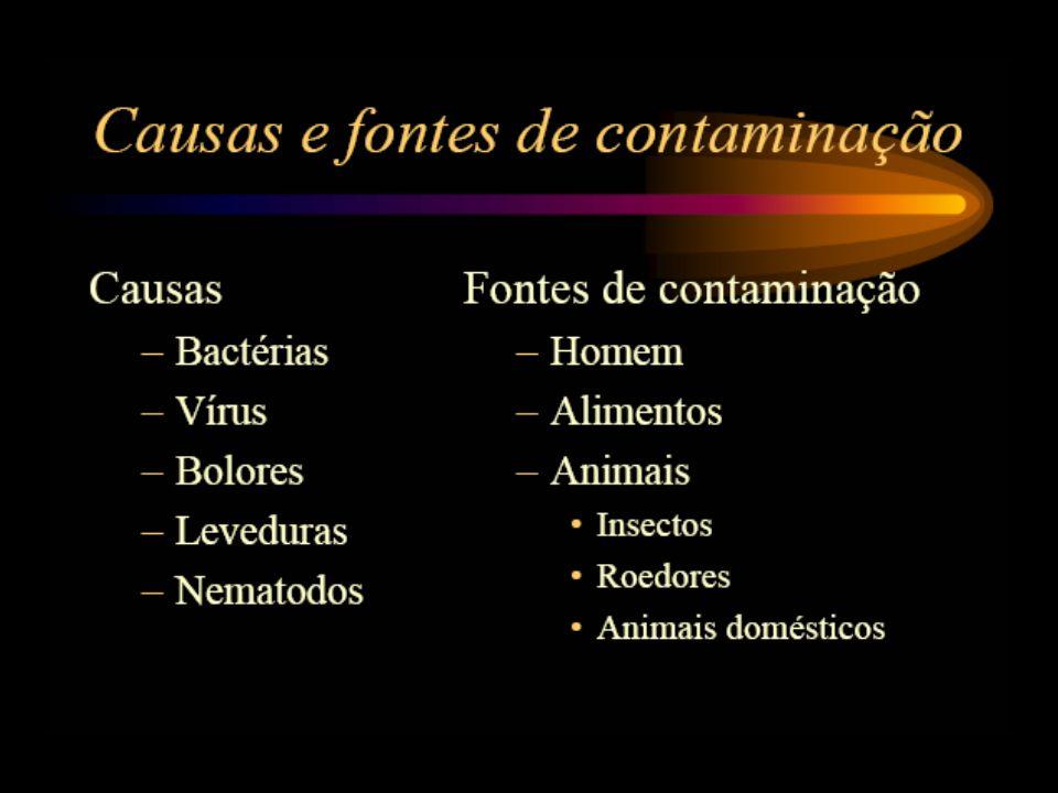 Tipos de toxinfecção alimentar Infecção alimentar: resulta do crescimento de microrganismos nos intestinos após a ingestão de alimento por eles contaminado Listeria monocytogenes Campylobacter jejuni Vibrio parahaemolyticus Vibrio vulnificus Yersinia enterocolitica