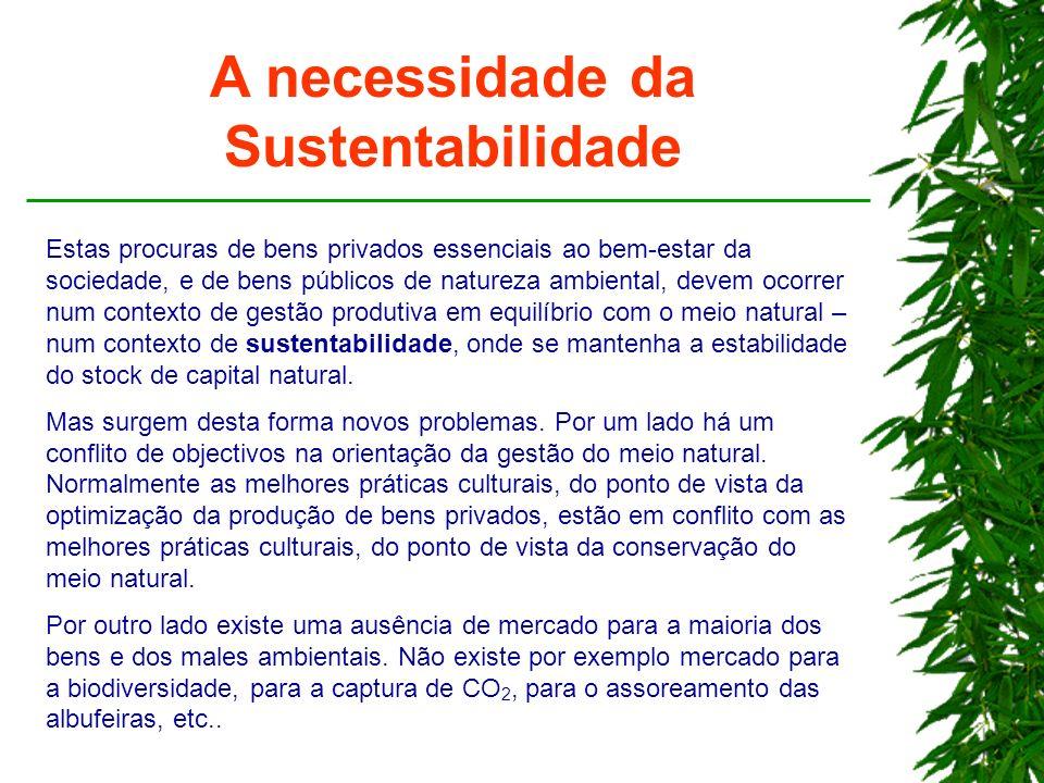A necessidade da Sustentabilidade Estas procuras de bens privados essenciais ao bem-estar da sociedade, e de bens públicos de natureza ambiental, deve