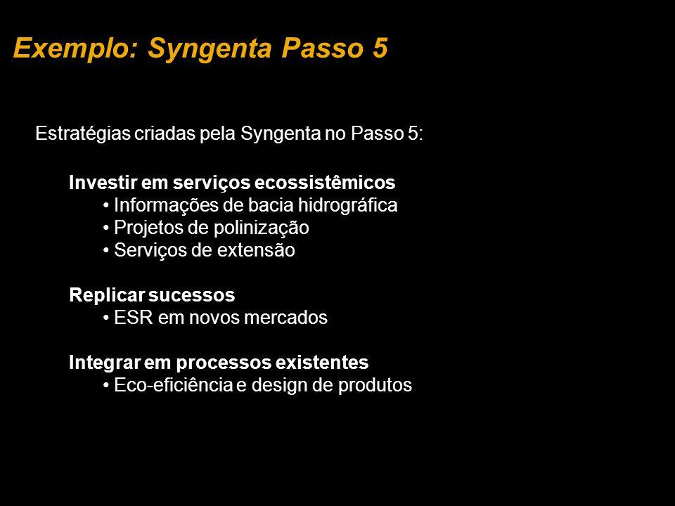 Exemplo: Syngenta Passo 5 Estratégias criadas pela Syngenta no Passo 5: Investir em serviços ecossistêmicos Informações de bacia hidrográfica Projetos de polinização Serviços de extensão Replicar sucessos ESR em novos mercados Integrar em processos existentes Eco-eficiência e design de produtos
